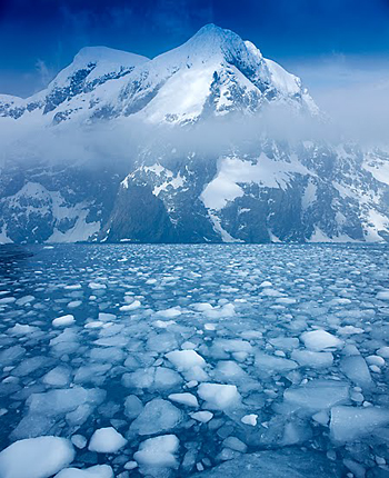 Icebergs-in-Antarctica-Jim-Zuckerman