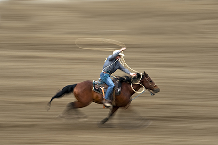 Rodeo_Panning_Action_Doug_Steakley