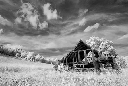 Infrared_Photography_Deborah_Sandidge