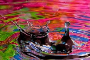 Water_Drop_Photo_Jim_Zuckerman