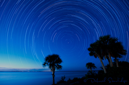 Deb_Sandidge_Night_Photography_Star_Trails