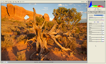 Peter_Burian_Adobe_screen