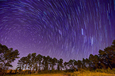 Star_trails_photo_Deborah_Sandidge