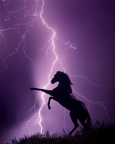Jim_Zuckerman_Rearing_Horse_Lightning_Photo