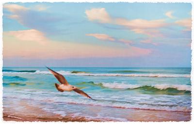 Deborah_Sandidge_Simplify_seagull