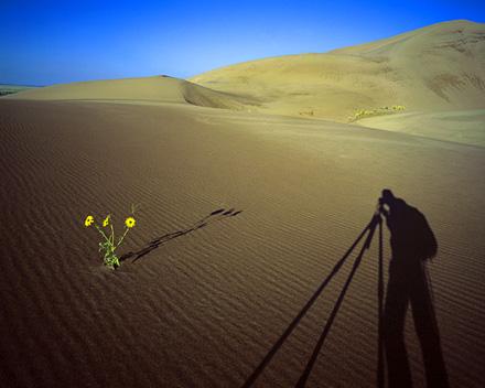 Self-portrait_shadow_Jim_Zuckerman