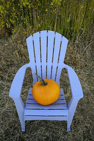 PumpkinChair1-Vert_KDK1358