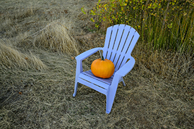 PumpkinChair-Before_KDK1355